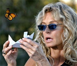 farrah fawcett releases live butterfly from designer butterfly release box