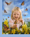 butterfly growing kit educational butterfly classroom painted lady pupa chrysalis life cycle poster