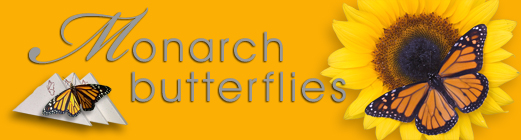 monarch butterfly releases