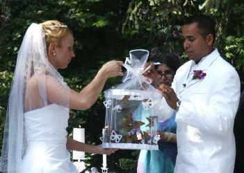 Releasing Live Erflies At Wedding