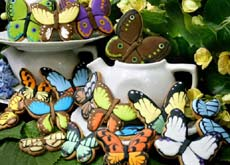 https://www.swallowtailfarms.com/graphics/tropical_butterfly_cookie_i.jpg